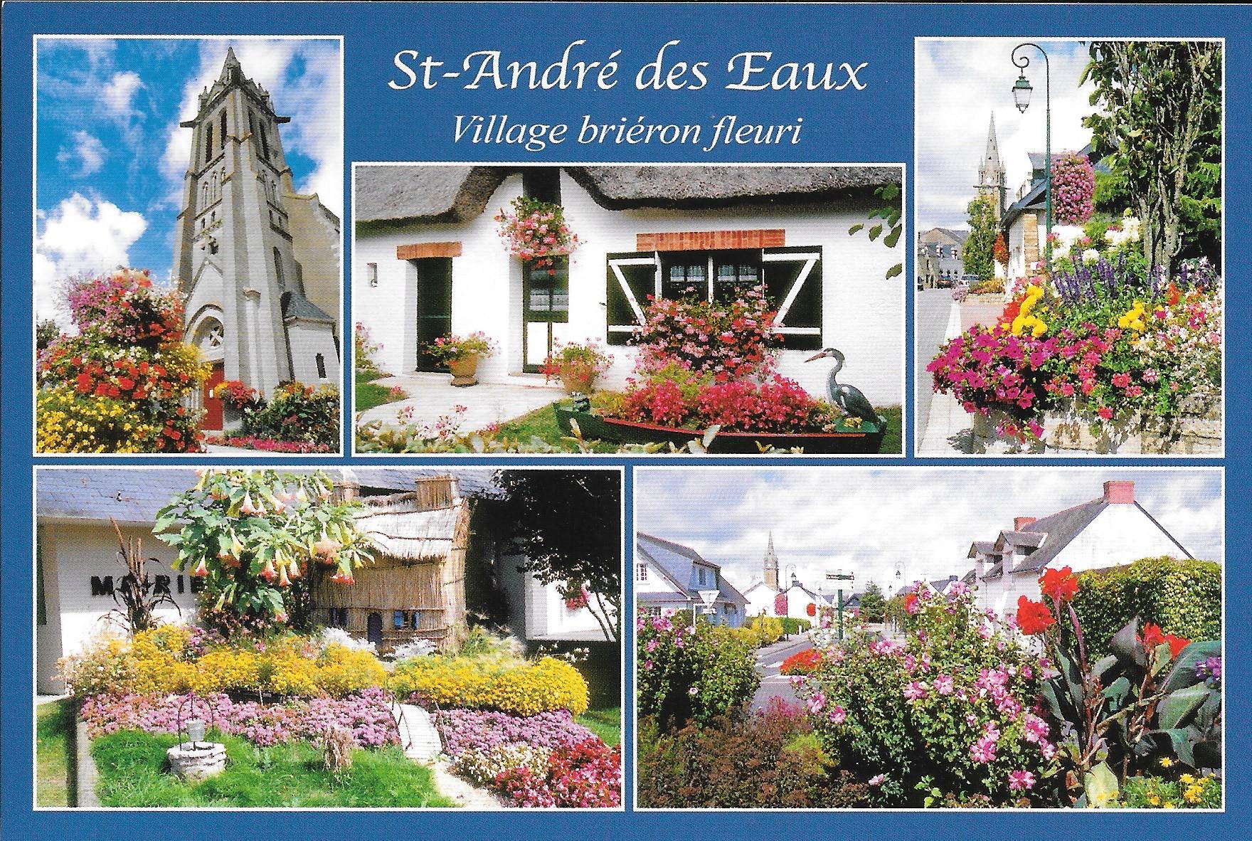 Saint André des Eaux (27)
