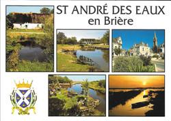 Saint_André_des_Eaux_(3)