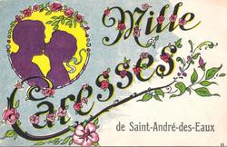 MILLE_CARESSES_de_Saint-André-des-Eaux