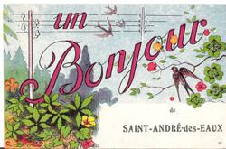 UN BONJOUR de SAINT-ANDRE-des-EAUX