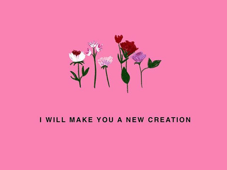 He Will Make You a New Creation