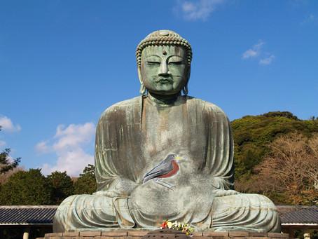 Buddha Birb