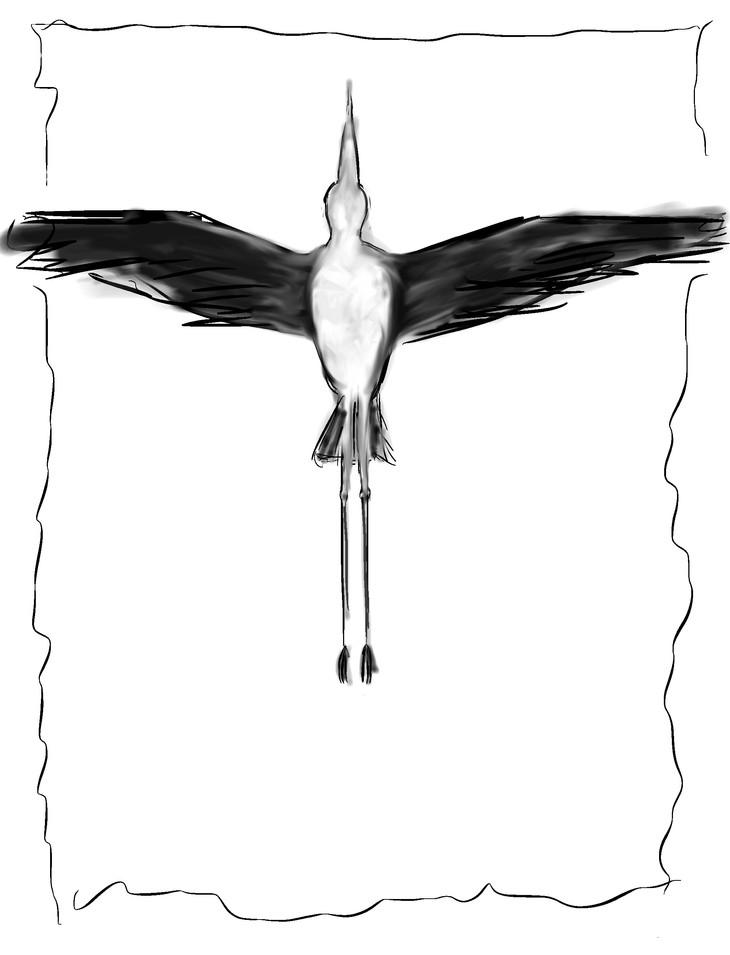 Heron Overhead