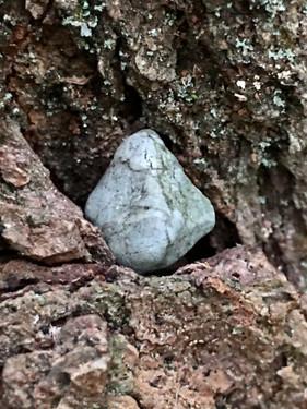 Scowling Stone