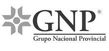 logo gnp.jpg