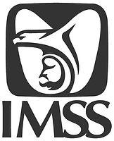 logo imss gris.jpg