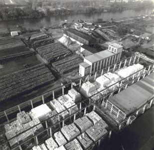 Vue aérienne des parcs à bois et à pâtes - pins et épicéas sont importés de Russie, de Finlande et du Canada, 1960.