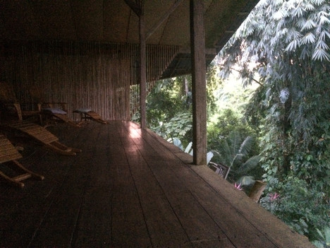 Moment zen: forêt tropicale au Costa Rica