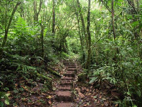 Mes 10 coups de coeur au Costa Rica