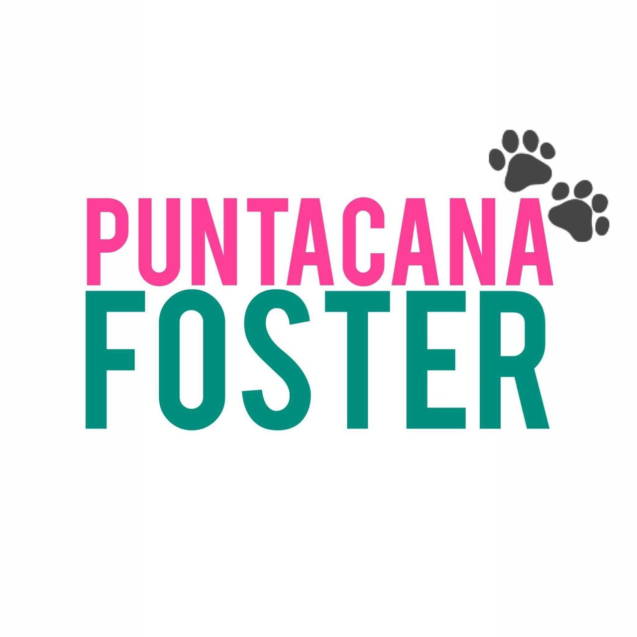 Punta Cana Foster