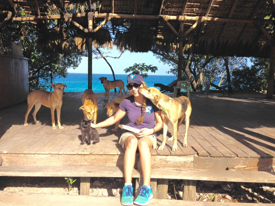 Feeding Street Animals in Punta Cana