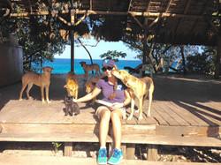 Feeding Street Animals in Punta Cana