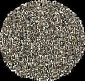circle-black-dots_edited_edited.png