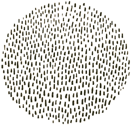 circle-black-dots_edited_edited.png
