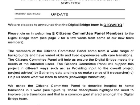 Views from the Digital Bridge: November 2020 update
