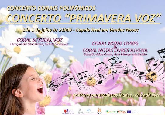 Concerto dia 1 julho Cartaz