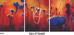 Field of Promise