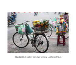 A Love afair with Bicycle Page 6.jpg