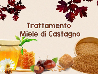 Trattamento Miele di Castagno: dolcezza e benessere!