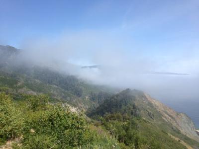 The Invitation in the Fog