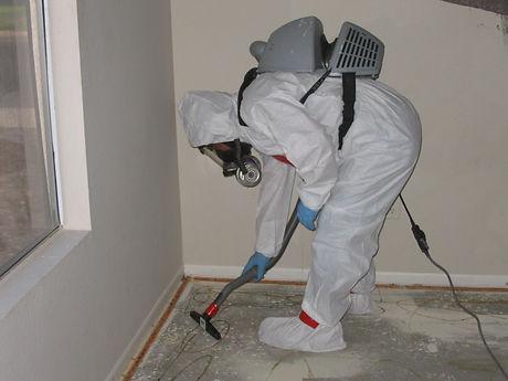Asbestos-Mold-Lead-4.jpg