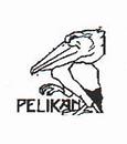 Lenka Pelikan + Co., Inc - Professional Accounting and Tax Services