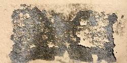 bigstock-Grunge-Old-Yellow-Paint-Cement-118412693