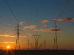 Environmental Commitment as Dominant Force in Energy Sector in 2021