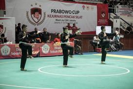 Prabowo Cup 2018-058.jpg