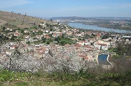 IMG_1610.jpegau bord du Rhône