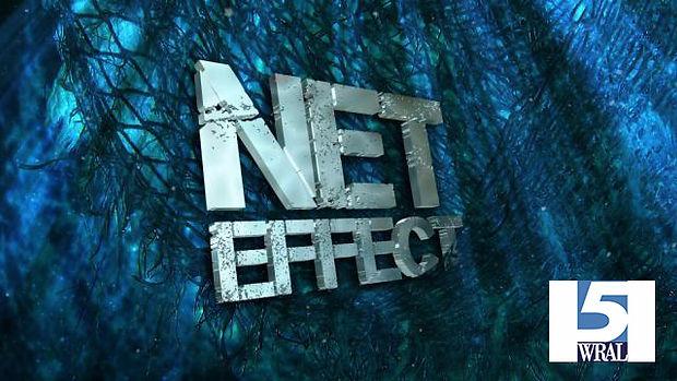 net effect title pane.jpg