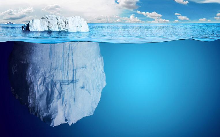 6290-iceberg-immergee-WallFizz.jpg
