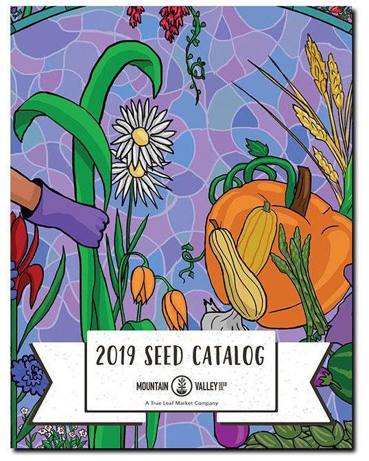 catalog-cover-2019