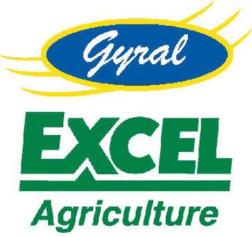 09_Excel_Gyral_Logos.jpg