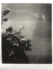 photo-137 24x32.jpg