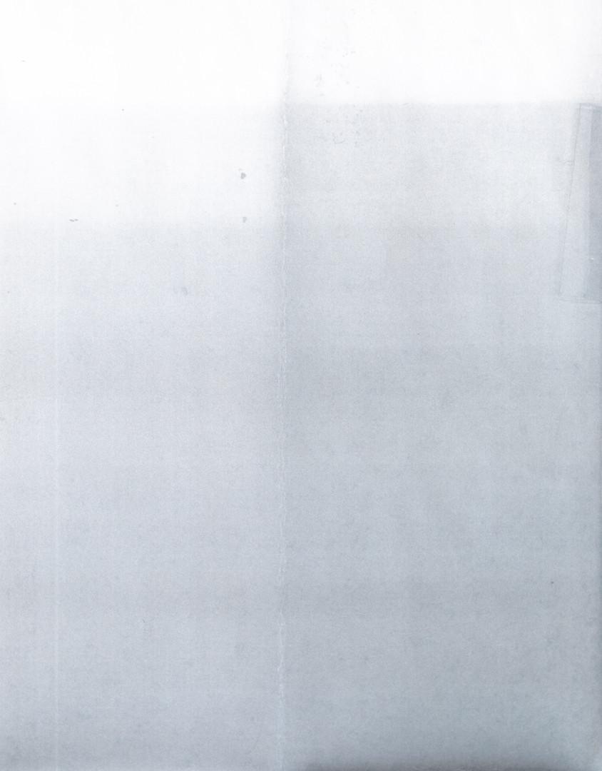 Copy of Test print Photogram
