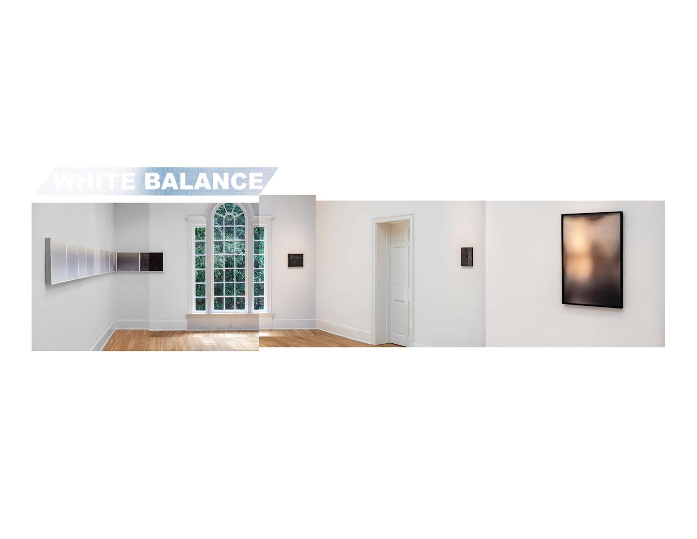 Installation View, White Balance, Swan Coach House 2019