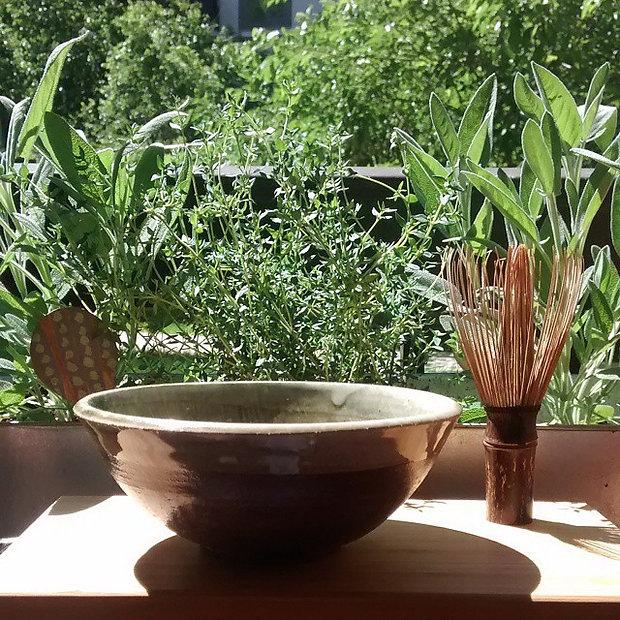Morning tea in the herb garden.jpg