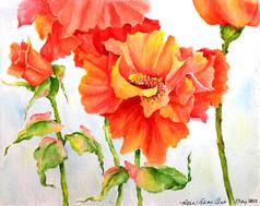 Floral Study