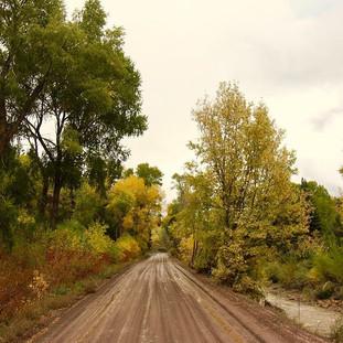 Telluride in the Fall