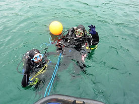 Open water dive training.jpg