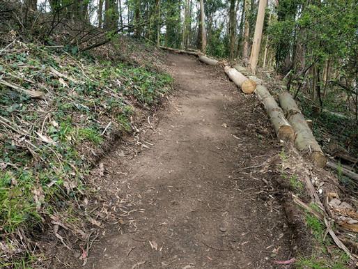 East Ridge Trail is Open!
