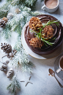 04.Sainsbury Christmas pine cake gloss.t