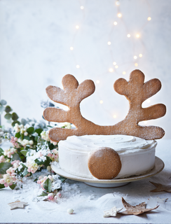 01.Sainsbury Christmas reindeer cake.tif