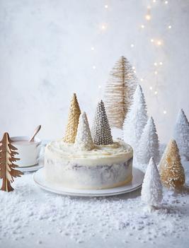 02.Sainsbury Christmas tree cake less in