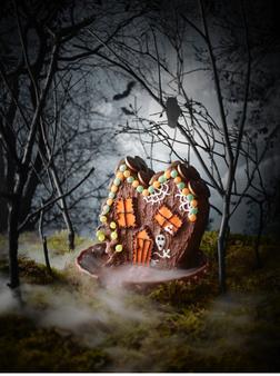 sains spooky house