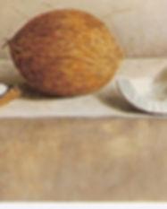 cocos sorprendidos por la luz 2.jpg
