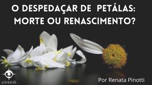 O despedaçar de pétalas: morte ou renascimento?