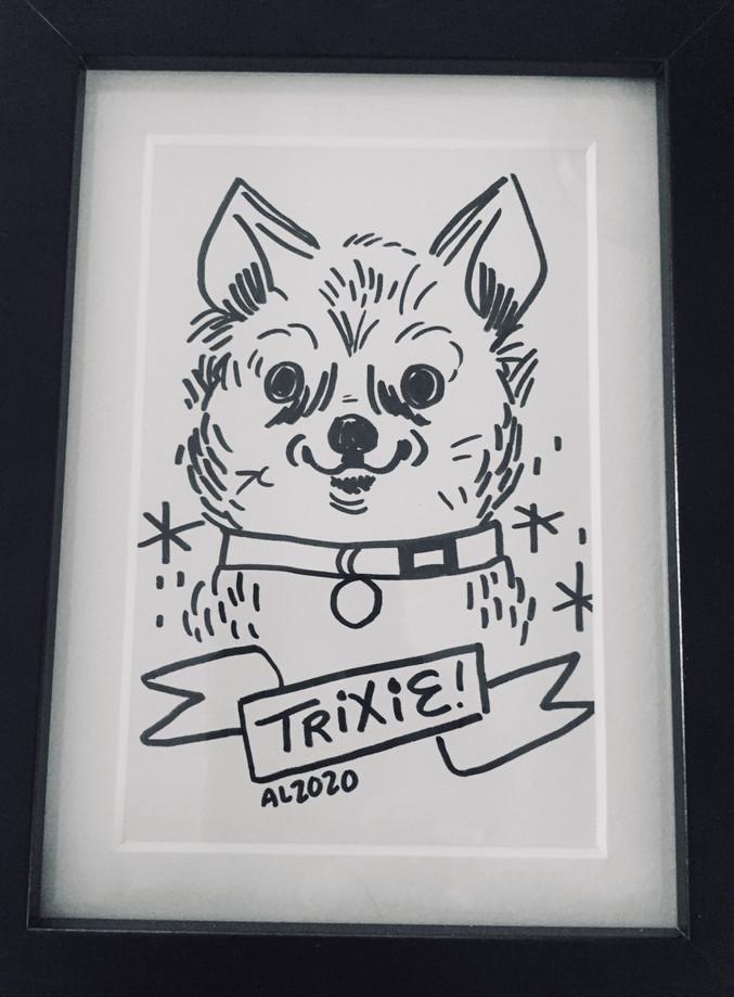 Trixie.jpg