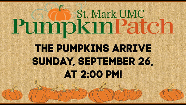 3 - Pumpkins arrive 9.26.21.jpg